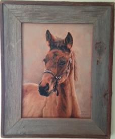 Barnwood Frame with Horse