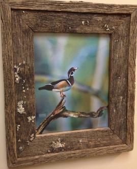 natural wood frame - Barnwood Frames