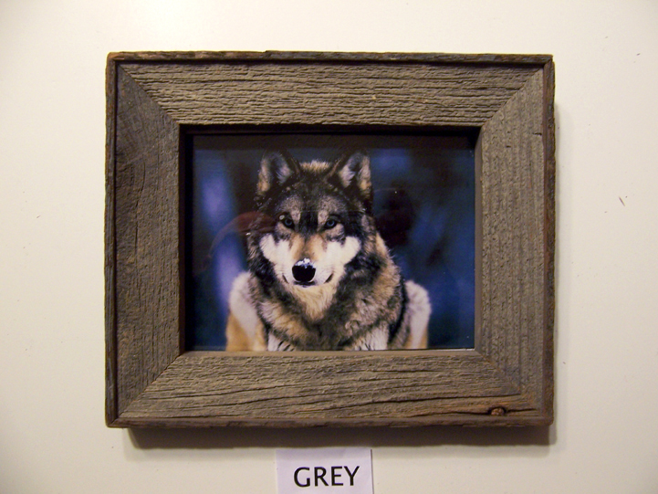 Barnwood Frame with Wolf