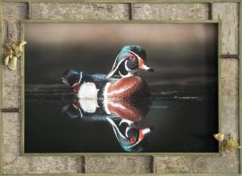 Barnwood Frame with Duck